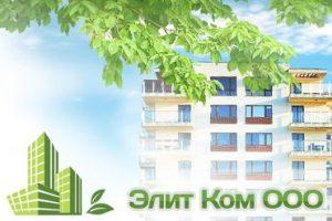"""Проблемы с застройщиком """"Элит ком"""" - банкротство и признание права собственности"""
